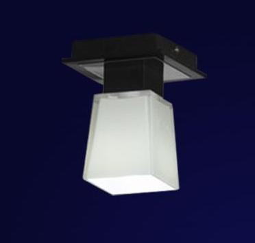 LSC-2507-01