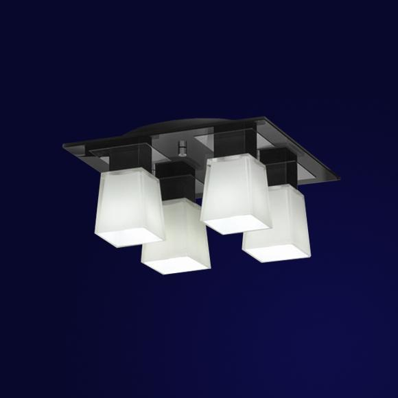 LSC-2507-04